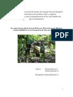 Guía para la elaboración de planes de manejo forestal