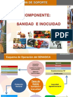 PROGRAMA DE SOPORTE WEB 2009-FINAL-2
