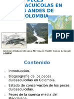 Presentación de peces 5