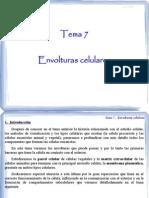 Tema 07 - Envolturas celulares