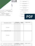 Propuesta Curricular Adaptada RIEB 2011 (2°)