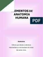 Aula1-anatomia (1)