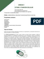 Unidad II Estructura y Funcion Celular