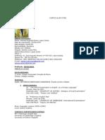 Novo-curriculum Vitae 5 páginasimprimir