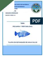 Pecuaria y Rentabilidad-Tilapia en Estanque de Agua Dulce