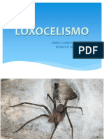 LOXOCELISMO