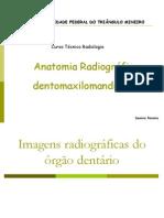 Anatomia Radiografica Den to Maxi Lo Mandibular III