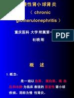 慢性肾小球肾炎-7年制