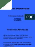 Tinciones Diferenciales Aspectos Tecnicos 1192717620718197 5[1]