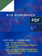 第七章 微生物的遗传与变异1