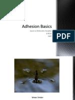 Adhesion Basics
