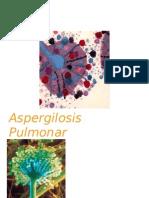 aspergilosis pulmonarexp