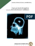 Neurologia Neuroanatomia