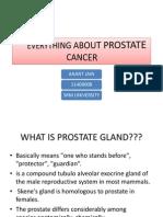 Prostate Cancer.