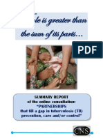 Stop TB Online Consultation Summary Report Lille 2011