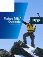 Turkey Mergers and Acquisitions Outlook 2011