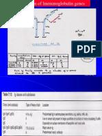 Gene Families II- Modified 010906