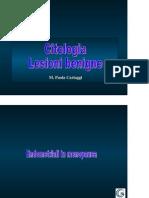Citopatologia 3Citologia benignità