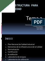 Infraestructura para la calidad(T3)