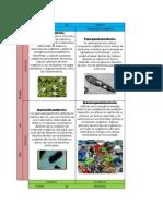 Tabla Tipos Nutricionales o Metabolicos Completa (1)