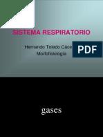 Sistema Respiratorio en Red