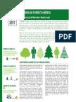 energia floresta iberica