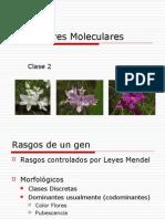 Clase 2-Marcadores Moleculares