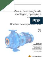 Icb100 Portuguese
