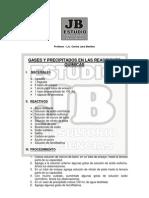 2. GASES Y PRECIPITADOS EN LAS REACCIONES QUÍMICAS
