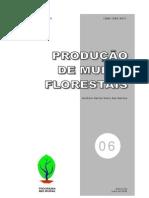 06 Producao de Mudas Florestais