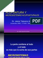 Acupuntura y Microsistemas Acupunturales