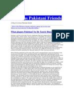 What Plagues Pakistan?