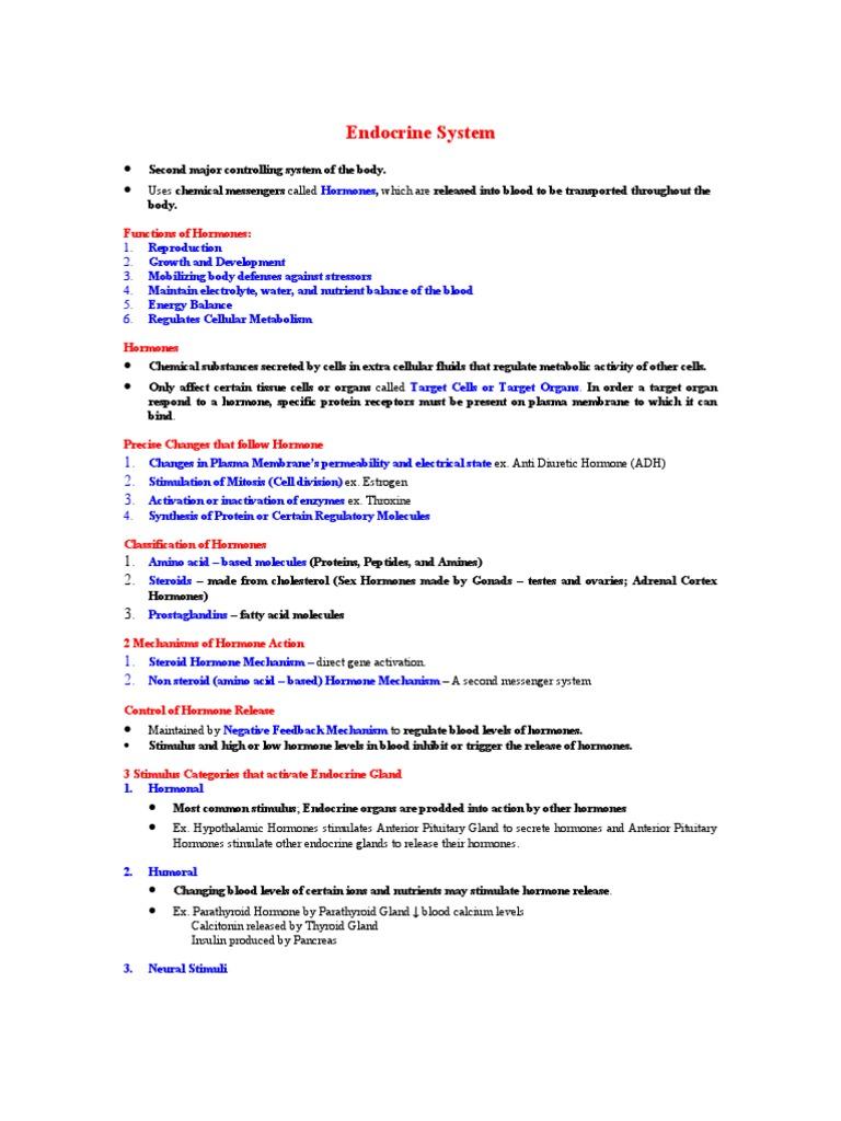 Endocrine System Hormone Endocrine System