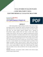 Experimental Studies on Saline Waste Water Treatment Using Electrochemical Catalytic Reactors
