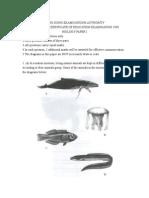 Paper 1 > Biology 1998 Paper 1