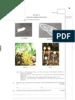 Paper 1 > Biology 2005 Paper 1