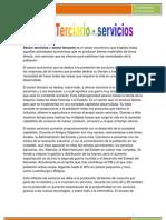 sector servicios-economia
