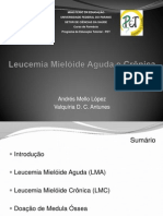 Leucemia Mieloide Aguda e Cronica