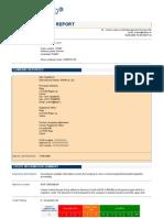 Credit Analysis Report