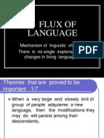 Flux of Languagecf