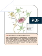 Gambar Hipotesis Mekanisme Resistensi Obat Epilepsi
