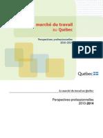 Perspectives Professionnelles 2010-2014