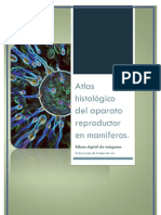 Atlas histológico del aparato reproductor en mamíferos