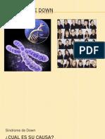 Sindrome de Down Expo Sic Ion Biologia 3 (1)