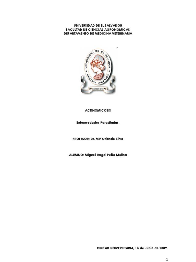 actinobacilosis merck manual veterinario diabetes