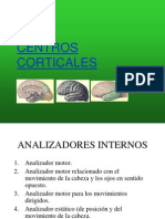 SN-Centros corticales