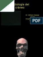 CLASE 02 - Radiografía de Cráneo