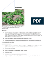 Horta Agroflorestal Sucessional