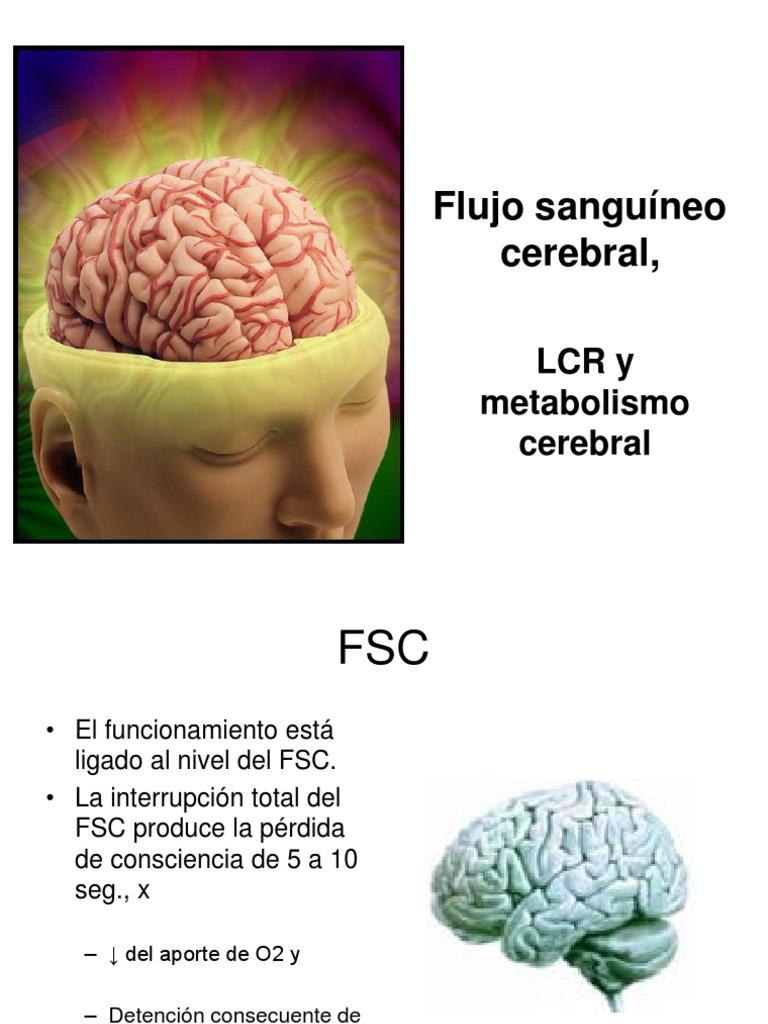 Clase14-Flujo Sanguineo Cerebral