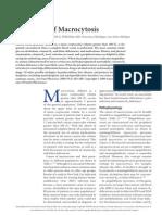 articulo hematologico